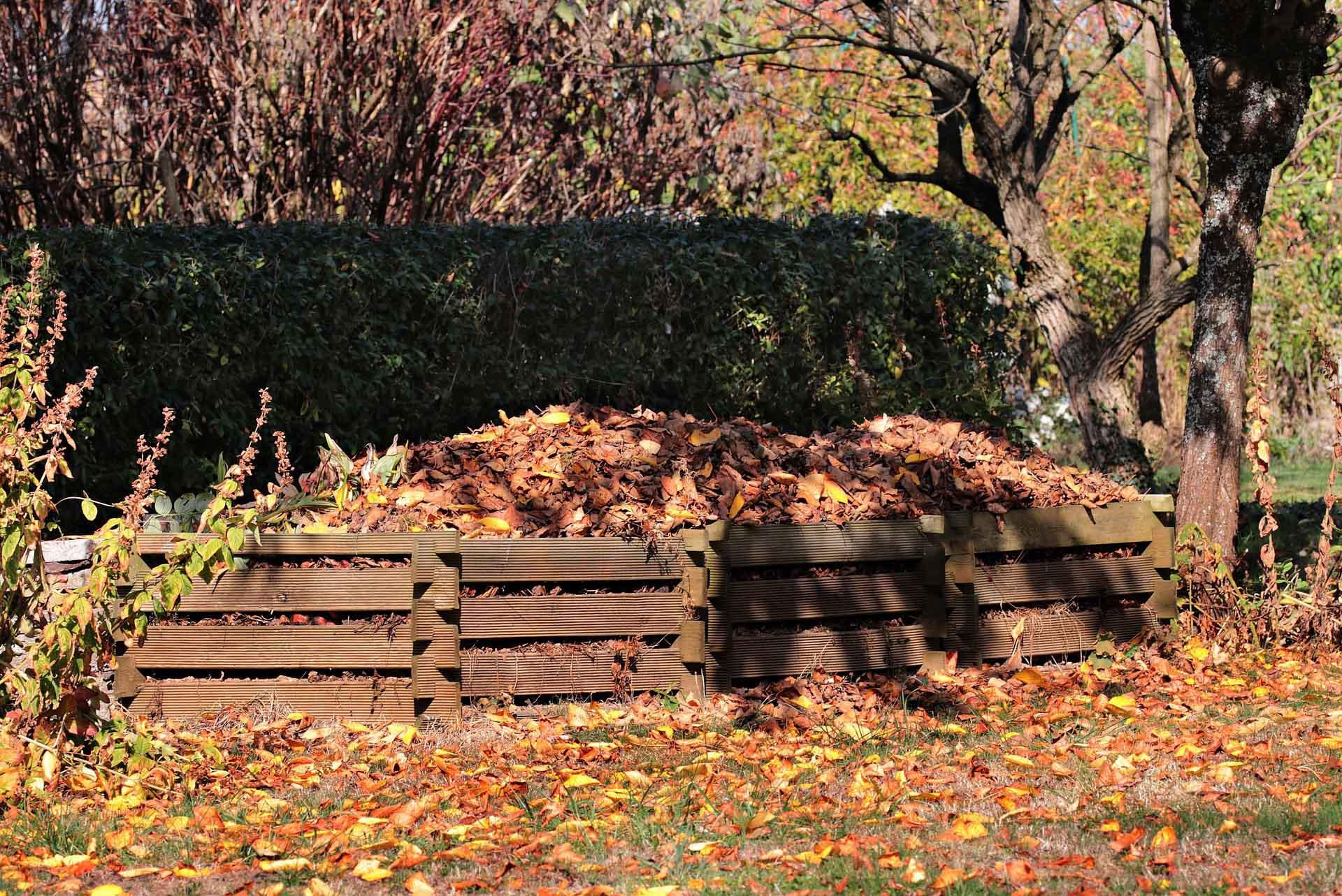 autumn-3755125_1920