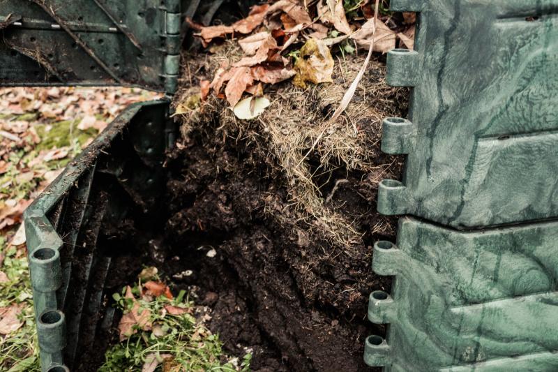 Kompost 05 (1)