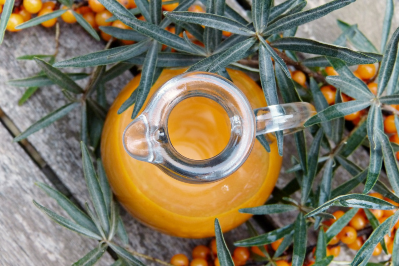 sea-buckthorn-2798599_1280