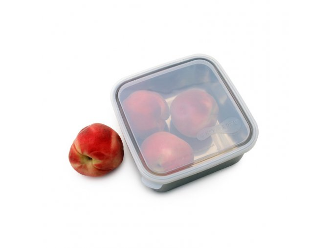 to go container large clear (1)